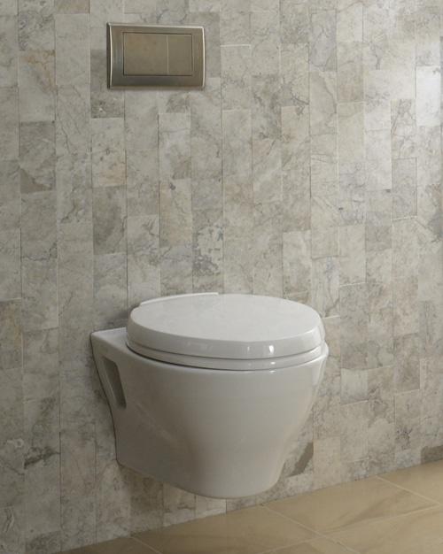 Toto Aquia wall hung toilet