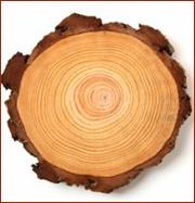 wood-cut.jpg